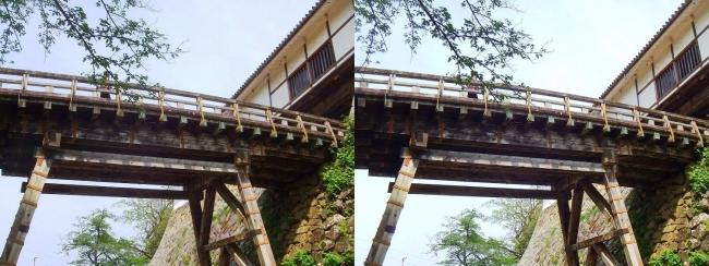 彦根城 廊下橋(平行法)