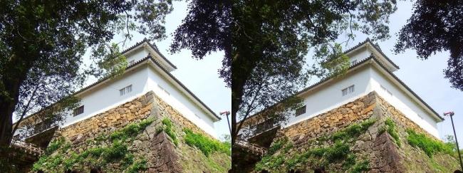 彦根城 天秤櫓①(交差法)