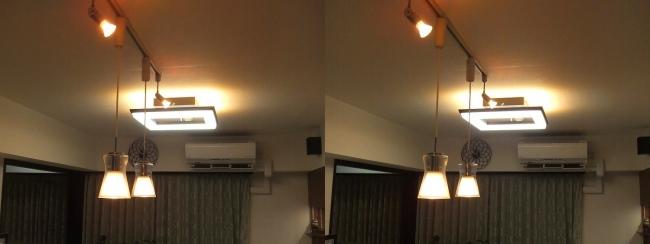 リビングルーム 照明⑤(平行法)