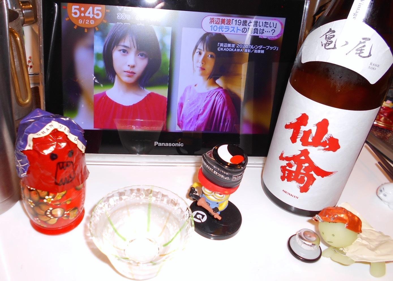classic_senkin_kamenoo30by3.jpg