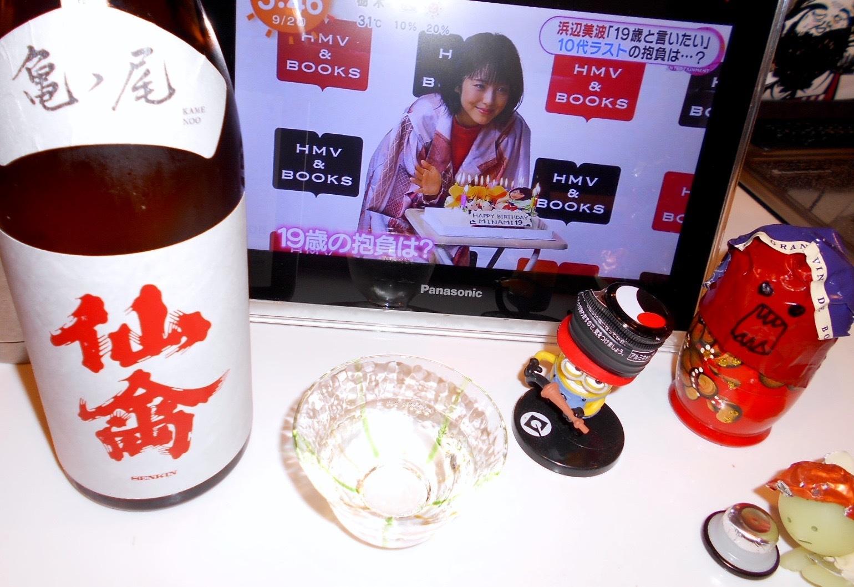 classic_senkin_kamenoo30by4.jpg