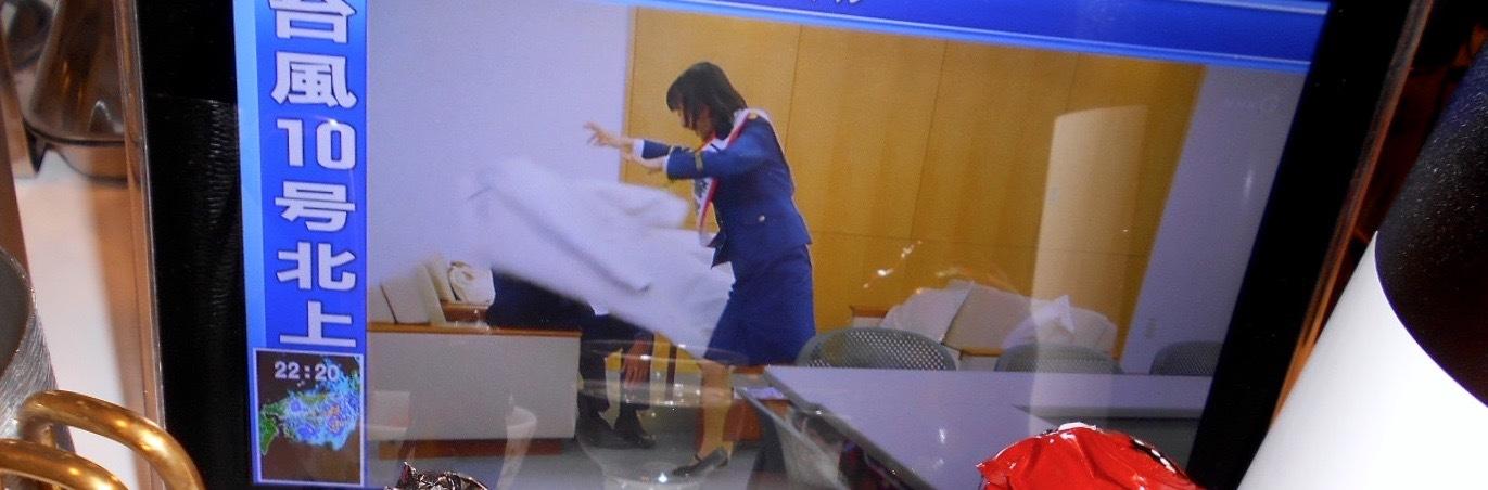 shuhari_jukusei_yamadanishiki26by13.jpg