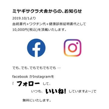 oshirase191001.jpg