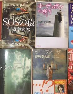 furuhon_blog_cat_06.jpg