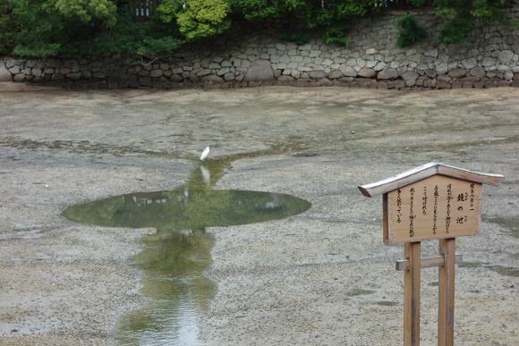 鏡の池01