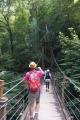 吊り橋4号路