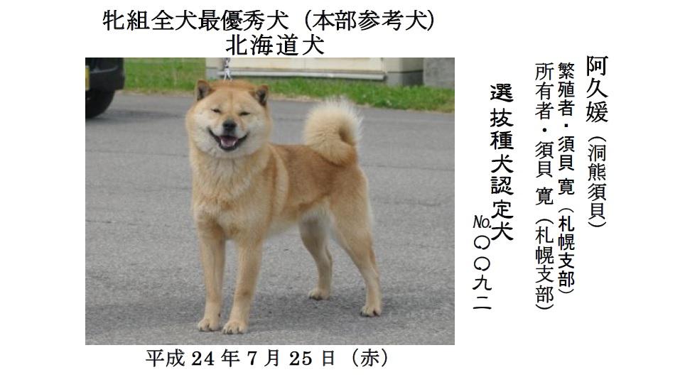 20190707中空知GCH-01-最優秀犬牝