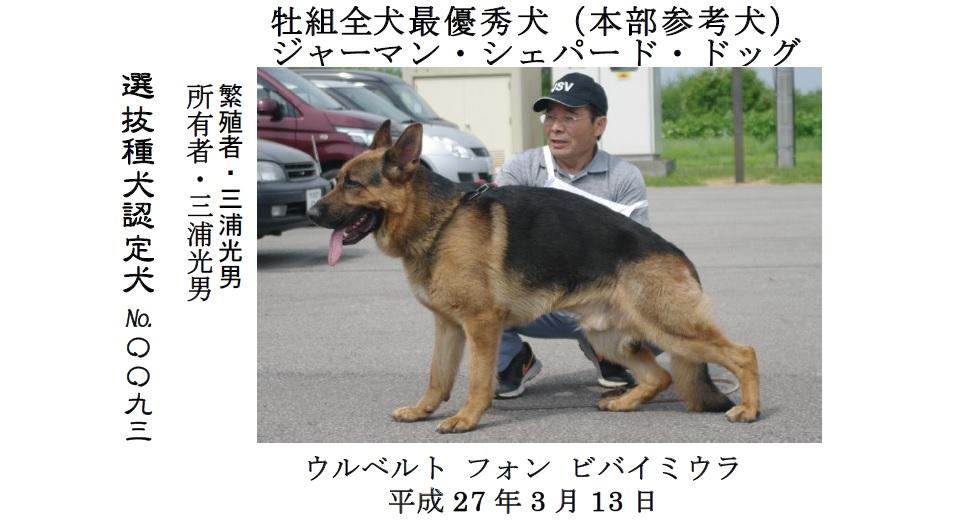 20190707中空知GCH-02-最優秀犬牡