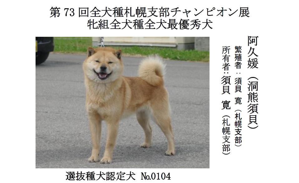 20190804札幌CH-01-最優秀犬牝
