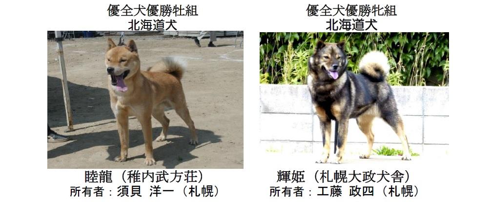20190804札幌CH-02-優全犬