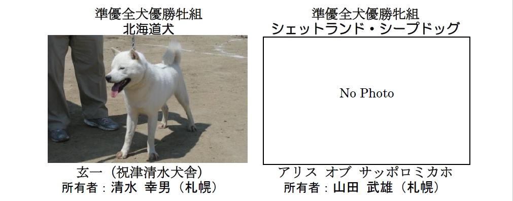 20190804札幌CH-03-準優全犬