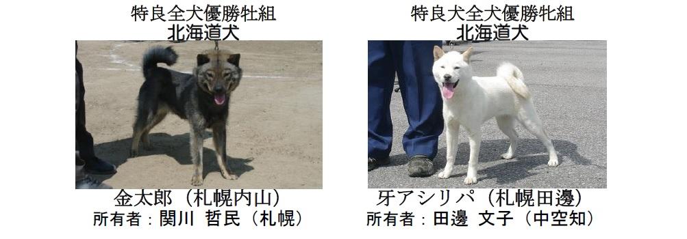 20190804札幌CH-04-特良全犬