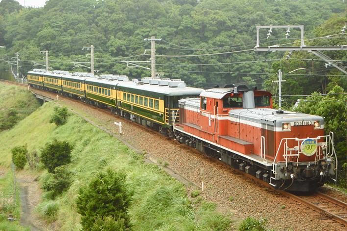 DSC_5636