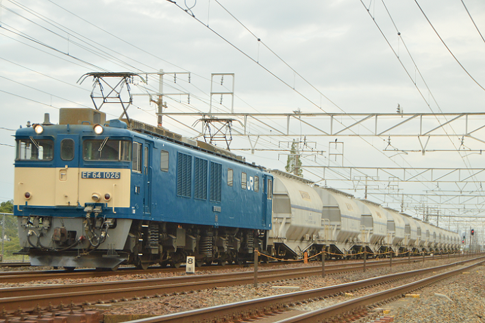 DSC_6007