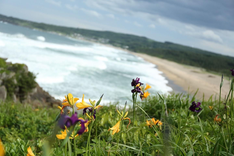 ブログ 初夏の浜.jpg