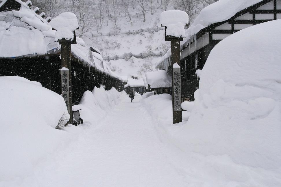 ブログ 鶴の湯の玄関.jpg