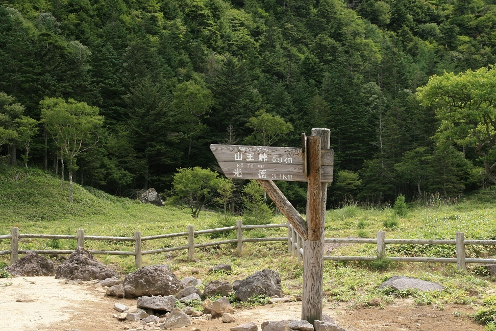 ブログ 道標.jpg