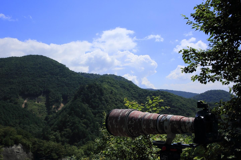 ブログ 野鳥撮影の方のカメラ.jpg