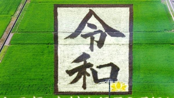 P1000621 - コピー