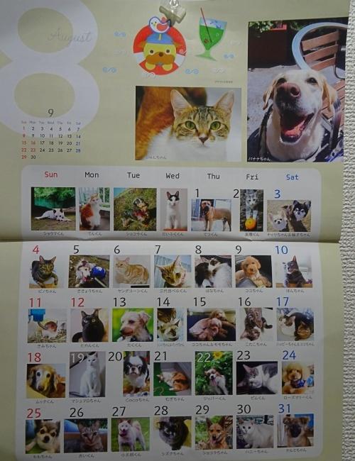 ワンコ・ニャンコ365日カレンダー