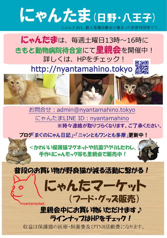 にゃんたま日野ポスター2019-9