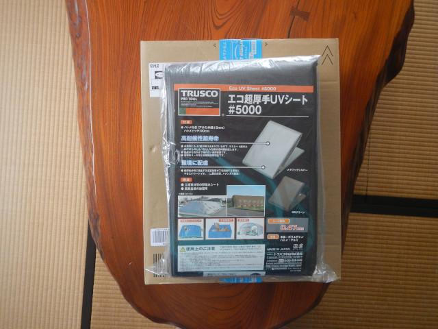 DSCN4300_370.jpg