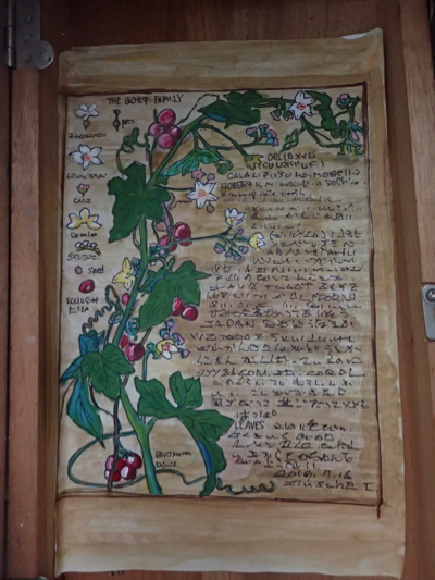 塗り絵(つる植物)