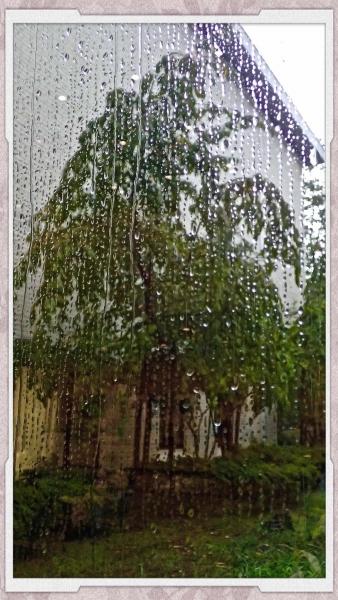 雨の美術館