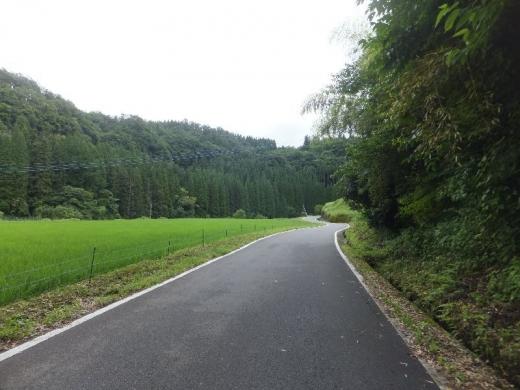 BungoTaketaHakusui_001_org.jpg