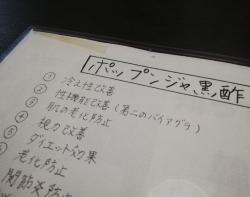 HimejiHanahina_003_org.jpg