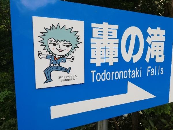 KamiTodoroki_002_org.jpg