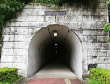 KoikanaTunnel_002_org.jpg