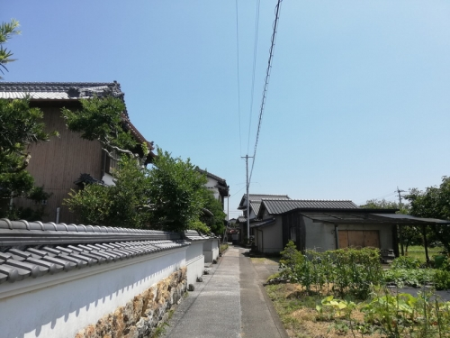 NankokuKuksa_012_org.jpg