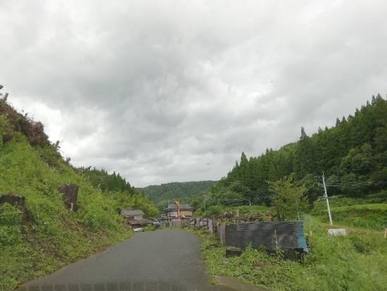 TotoroBusStop_003_org.jpg