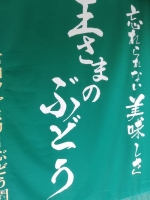 UsaMiyataFamily_001_org.jpg