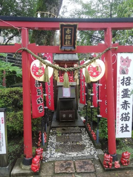 UsukiAkaneko_004_org.jpg