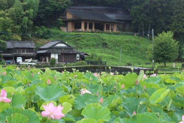 UsukiHasu_008_org.jpg