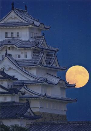 姫路城 月夜の大天守