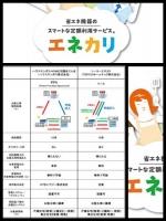 東京電力 v2h エネカリ