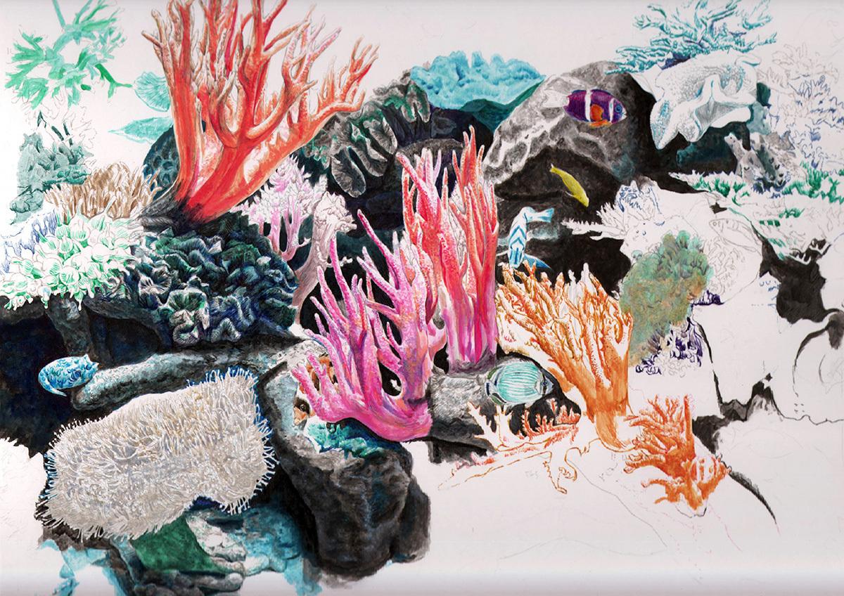 coral0729.jpg