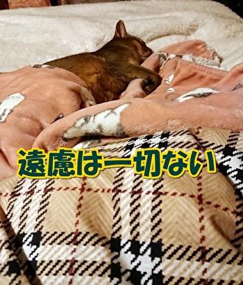 0707enryo.jpg