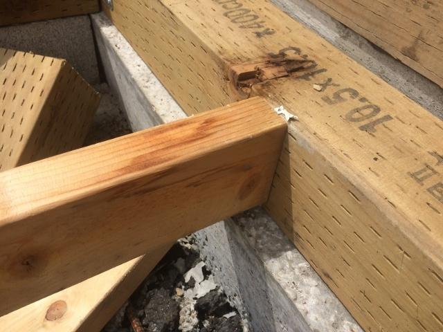 茨城トイレ床板排水工事 (15)