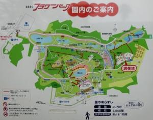 浜松フラワー2019-5