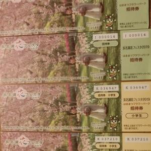 浜松フラワー2019-3-1