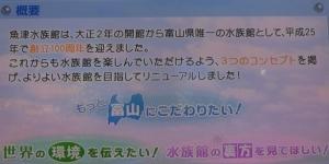 魚津水族初回5