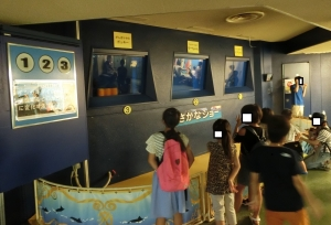 魚津水族初回11