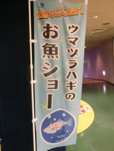 魚津水族初回14