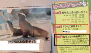 いしかわ動物初回6-1