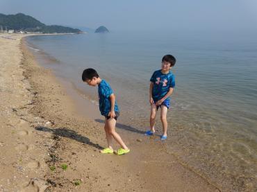 孫2馬篠海岸