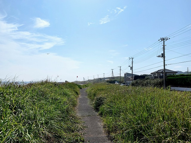 海岸沿いの小径